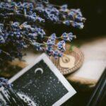 月星座のサビアンシンボルの読み方
